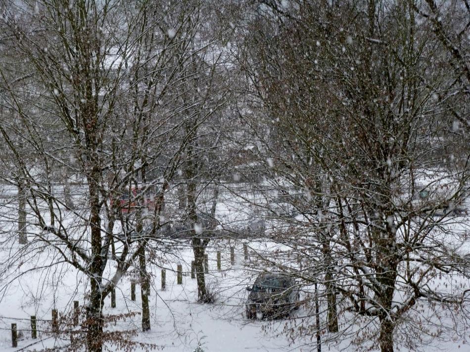 Das ist viel Schnee