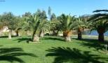 Palmen Park wunderschön.