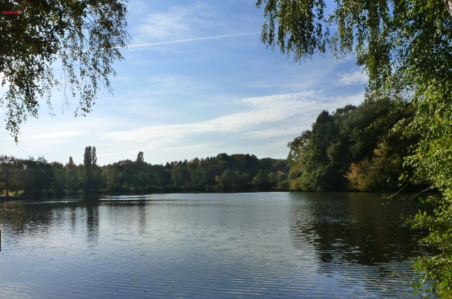 Am See bei Gradbach.