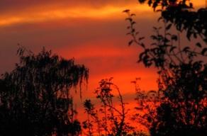 So ein schönes Abendrot und du wirst sehen bald kommt der erste Traum.
