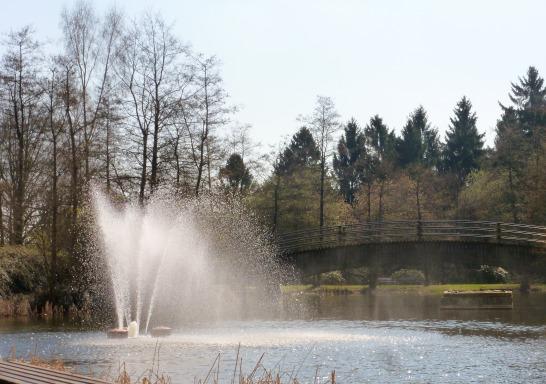 Teich im Park.
