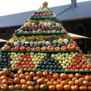 Eine Pyramide mit vielen Kürbissen.