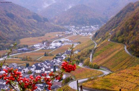 Blick ins Tal Im Tal das ist Dernau.