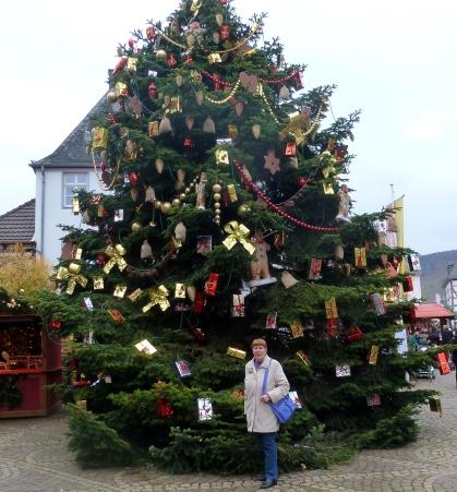 Ein schöner großer Baum
