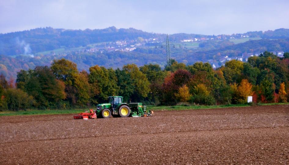 Ein Bauer pflückt sein Feld