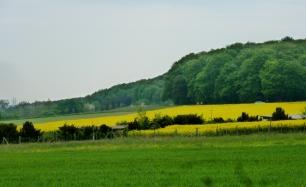 Landschaft an der Ahr