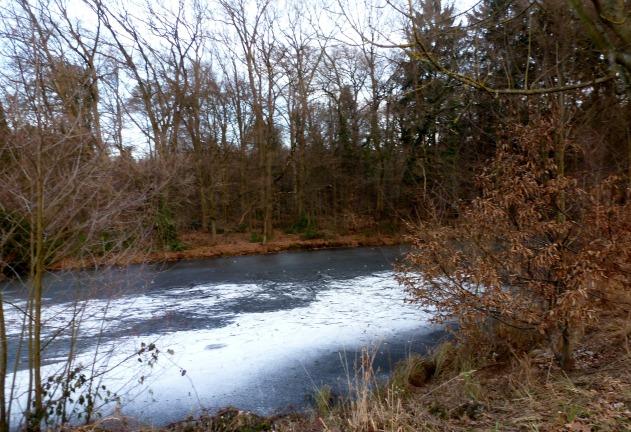 Der See hat eine kleine Eisschicht.